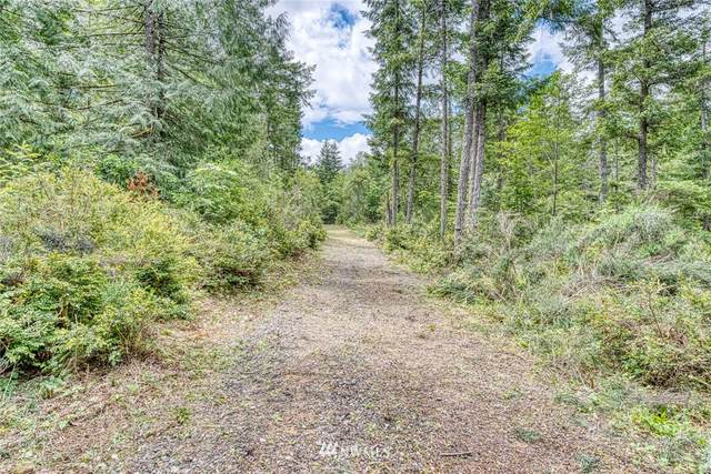 0 Larson Lane NW, Seabeck, WA 98380 (#1617186) :: Better Homes and Gardens Real Estate McKenzie Group