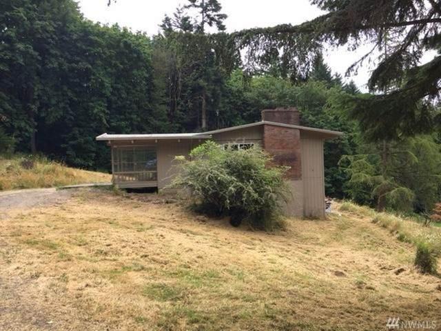 37215 NW Hillis Hill Rd, Woodland, WA 98674 (#1617253) :: McAuley Homes