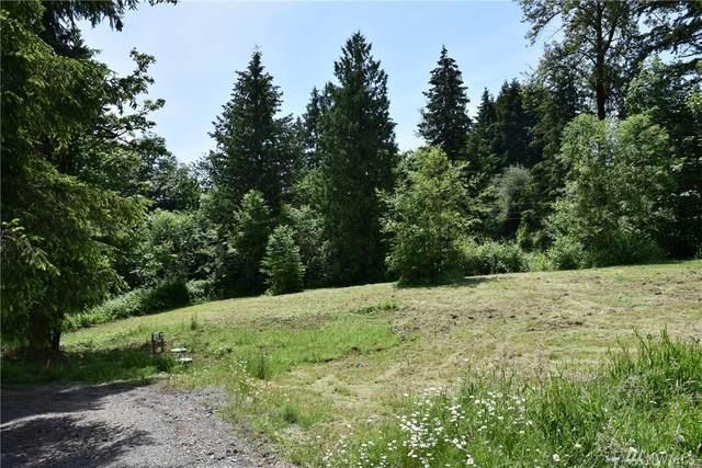 426 Butte Hill Rd, Woodland, WA 98674 (#1617331) :: McAuley Homes