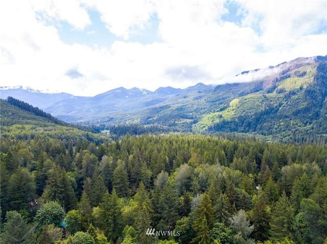 7590 Canyon View Drive, Deming, WA 98244 (#1617688) :: Better Properties Real Estate