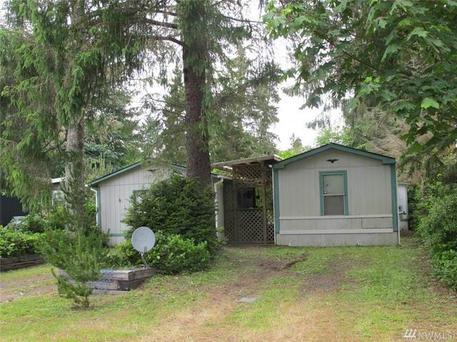 2207 300th Place, Ocean Park, WA 98640 (#1617819) :: Real Estate Solutions Group