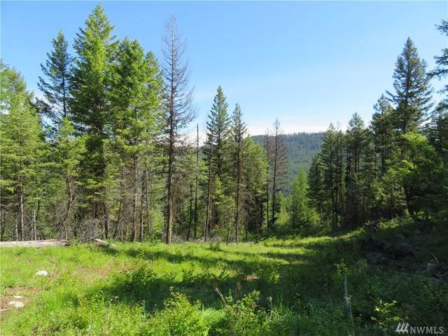 0-TBD First Creek Rd, Curlew, WA 99118 (#1618325) :: Real Estate Solutions Group