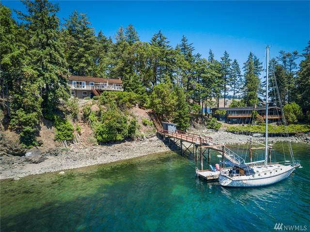 420 Davison Head Rd, San Juan Island, WA 98250 (#1618646) :: Northern Key Team