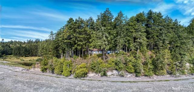 931 Whitney Rd, Quilcene, WA 98376 (#1618679) :: Northern Key Team
