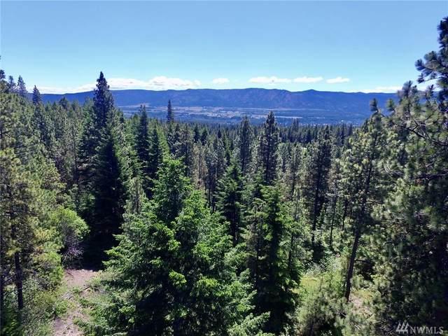 0 Summit View Rd, Cle Elum, WA 98922 (MLS #1619266) :: Nick McLean Real Estate Group