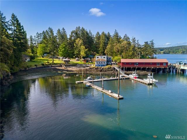 37 Blind Bay Rd, Shaw Island, WA 98286 (#1619773) :: The Robinett Group