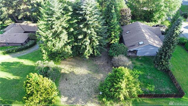 2414 257th Place NW, Stanwood, WA 98292 (#1619871) :: Hauer Home Team
