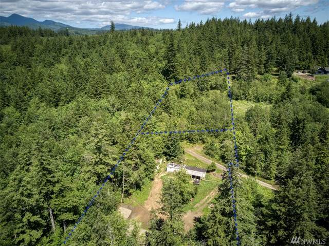 231 Elkhound Pass Rd, Quilcene, WA 98376 (#1620433) :: Northern Key Team