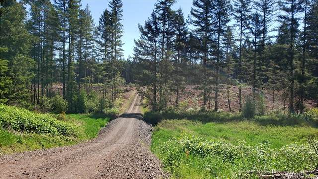 0 88th St NW Lot 2, Lakebay, WA 98349 (#1620487) :: Priority One Realty Inc.