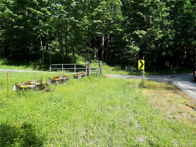 8310 North Pass Rd, Everson, WA 98247 (#1620549) :: Ben Kinney Real Estate Team