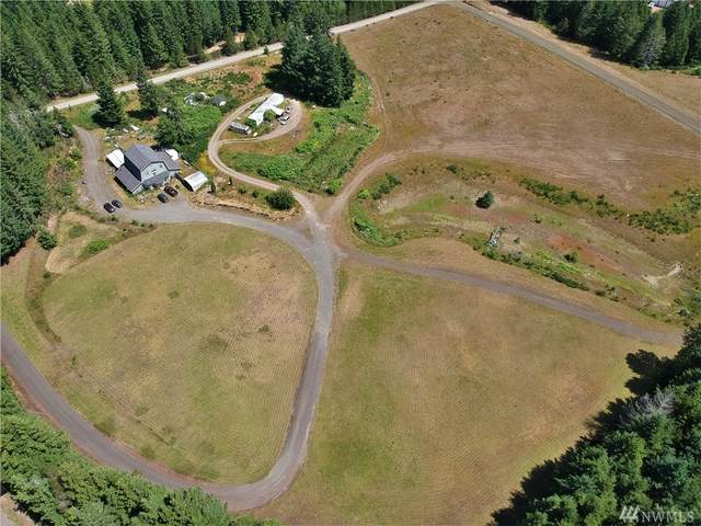 6351 E Mcreavy Road, Shelton, WA 98584 (#1620605) :: Capstone Ventures Inc