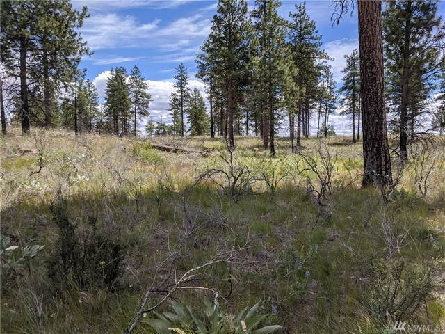 0 Evergreen Camp Road Lot 9, Chelan, WA 98816 (#1621200) :: Mike & Sandi Nelson Real Estate