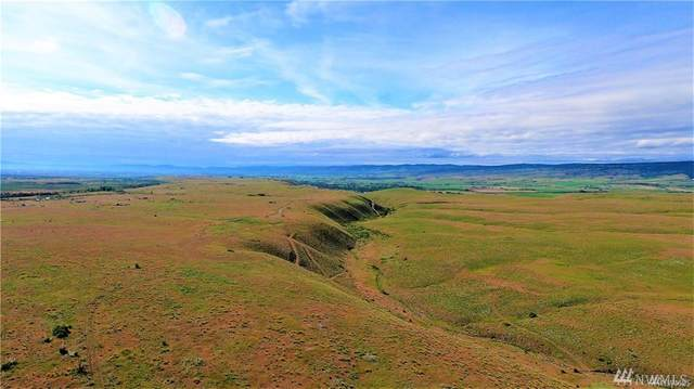 0 Sagebrush Road, Ellensburg, WA 98926 (#1621636) :: Capstone Ventures Inc