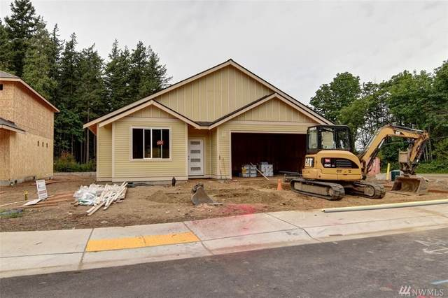 385 Mystic St, Blaine, WA 98230 (#1621689) :: Ben Kinney Real Estate Team