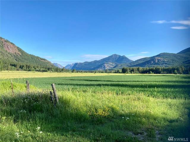 800 Wolf Creek Road, Mazama, WA 98862 (#1621981) :: The Shiflett Group