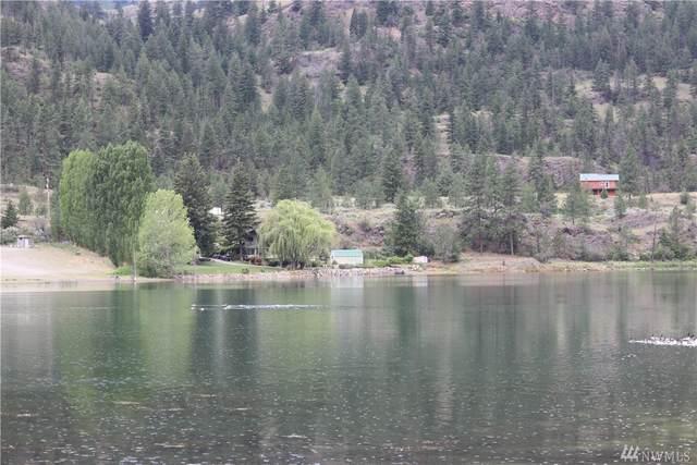 1 Newton Wannacut Lake, Oroville, WA 98844 (#1622238) :: Northern Key Team
