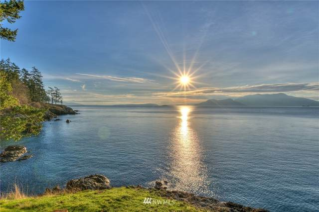 101 Albert Street, Orcas Island, WA 98245 (#1622255) :: Pacific Partners @ Greene Realty