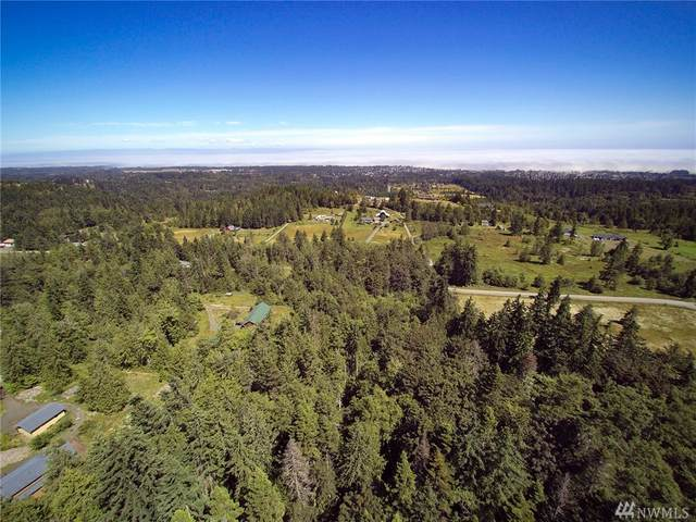 9999 Southridge Rd, Port Angeles, WA 98363 (#1622565) :: Canterwood Real Estate Team