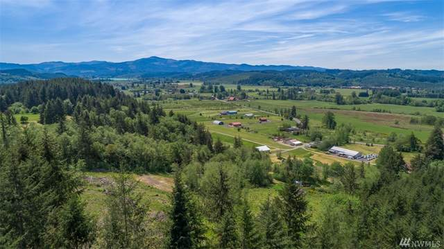 0 Xxx Curtis Hill Rd, Chehalis, WA 98532 (#1622827) :: Northern Key Team