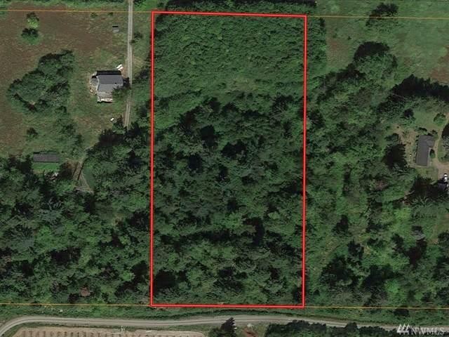 31-XX Haynie Rd, Custer, WA 98240 (#1622929) :: Better Properties Lacey