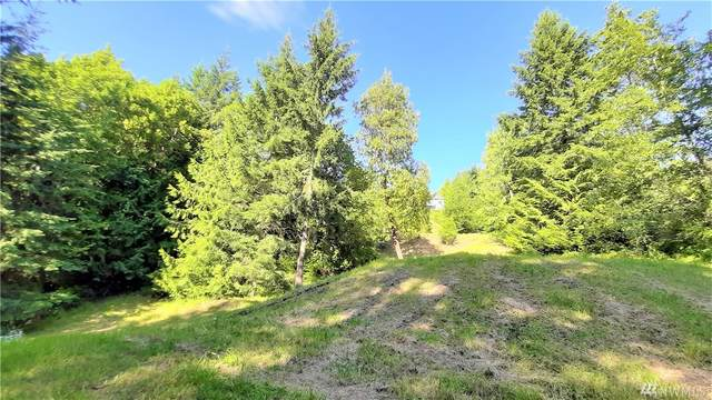 9999 Fox Hollow Rd, Sequim, WA 98382 (#1623260) :: Real Estate Solutions Group
