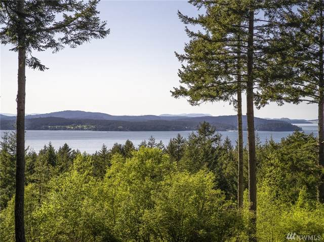 275 Valley View Rd, Lopez Island, WA 98261 (#1623395) :: Priority One Realty Inc.