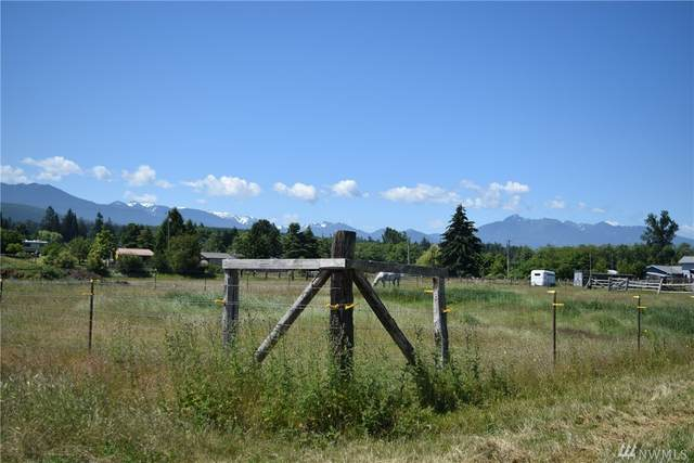 999 Runnion (Lot D) Road, Sequim, WA 98382 (#1623616) :: Better Homes and Gardens Real Estate McKenzie Group