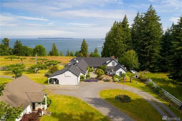 260 Tidewinds Lane, Orcas Island, WA 98245 (#1623800) :: Lucas Pinto Real Estate Group