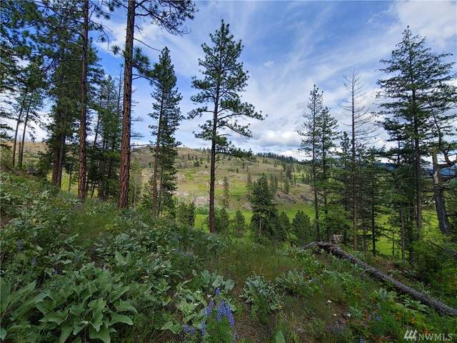 7-LOT Marble Valley Basin Rd, Addy, WA 91909 (#1623902) :: The Kendra Todd Group at Keller Williams