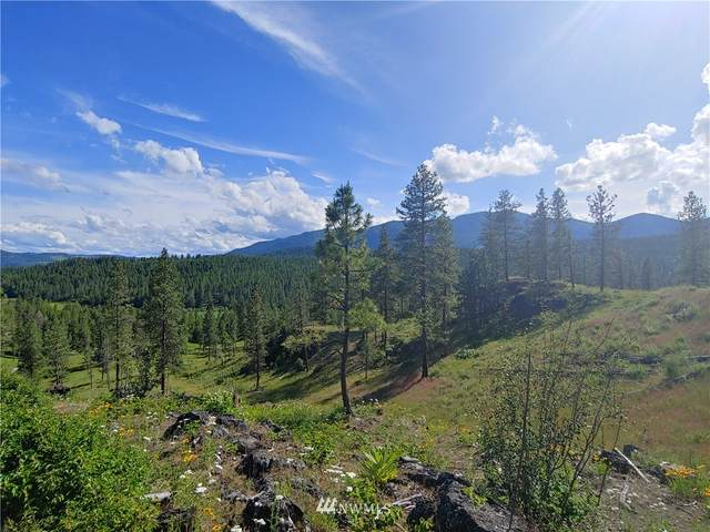 6 Marble Valley Basin Road, Addy, WA 91909 (#1623963) :: Tribeca NW Real Estate
