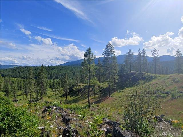 6-LOT Marble Valley Basin Rd, Addy, WA 91909 (#1623963) :: The Kendra Todd Group at Keller Williams