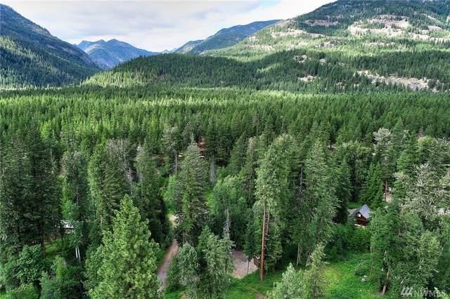 4 Cedar Cir, Mazama, WA 98833 (#1624116) :: Ben Kinney Real Estate Team