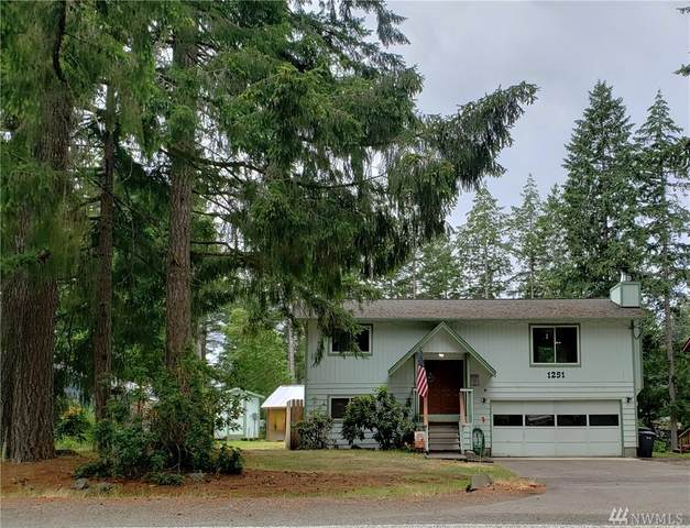 1251 E Mason Lake Rd, Shelton, WA 98584 (#1624147) :: Mike & Sandi Nelson Real Estate