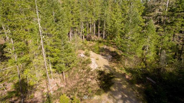 1 Lodgepole Lane, Skamania, WA 98616 (#1624220) :: Icon Real Estate Group