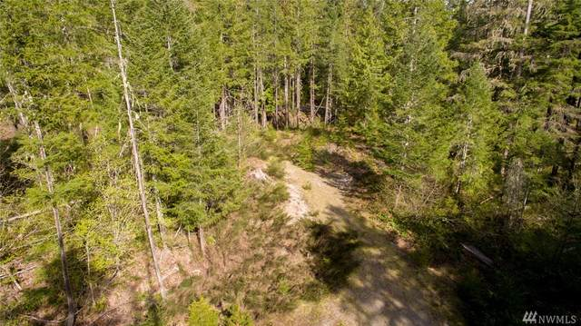 1 Lodgepole Lane, Skamania, WA 98616 (#1624220) :: Real Estate Solutions Group