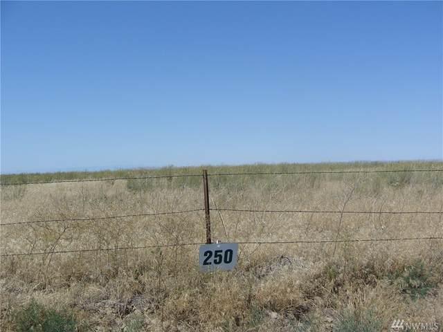 250 Black Rock Rd, Wilson Creek, WA 98860 (#1624309) :: Alchemy Real Estate