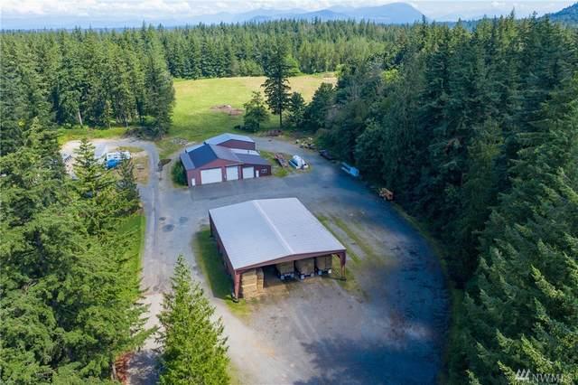 3710 Sorenson Rd, Everson, WA 98247 (#1624507) :: Ben Kinney Real Estate Team