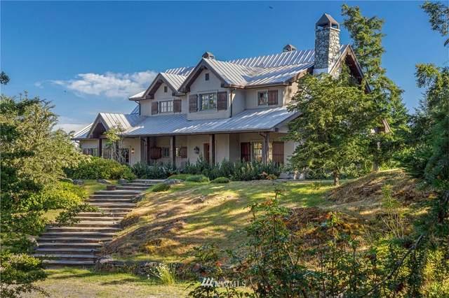 246 Sanctuary Lane, San Juan Island, WA 98250 (#1624616) :: Tribeca NW Real Estate