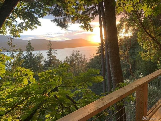 1373 Palisades Dr, Orcas Island, WA 98245 (#1624741) :: Ben Kinney Real Estate Team