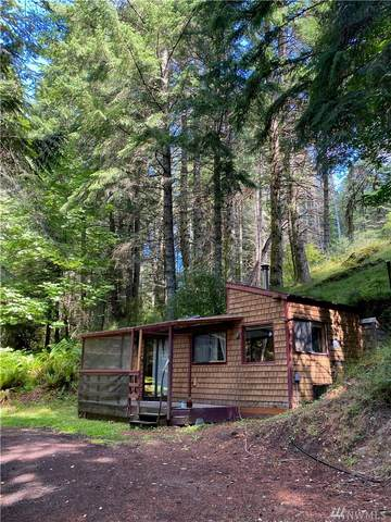 137 Raven Ridge Rd, Friday Harbor, WA 98250 (#1624883) :: Ben Kinney Real Estate Team