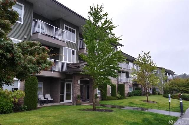 508 Darby Dr #203, Bellingham, WA 98226 (#1624893) :: Ben Kinney Real Estate Team