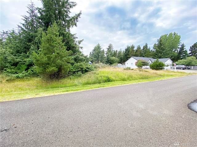 351 Ponderosa Lp NE, Ocean Shores, WA 98569 (#1624955) :: The Kendra Todd Group at Keller Williams