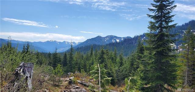 0 Unnamed, Clear Lake, WA 98235 (#1625074) :: Alchemy Real Estate