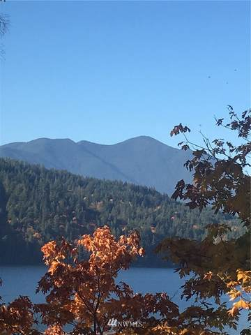 4266 E Quilcene Road, Quilcene, WA 98376 (#1625372) :: The Robinett Group