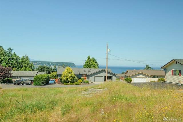 6 Huckleberry Place, Port Townsend, WA 98368 (#1625696) :: TRI STAR Team | RE/MAX NW