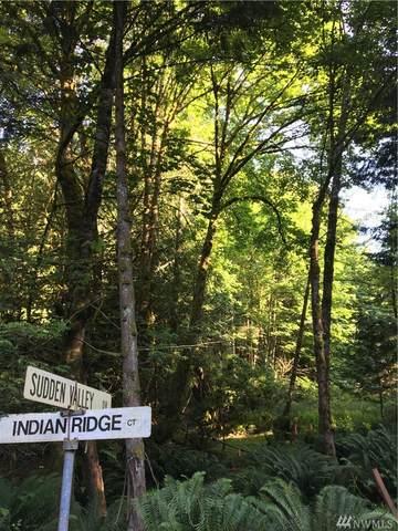 2 Indian Ridge Ct, Bellingham, WA 98229 (#1626251) :: Ben Kinney Real Estate Team