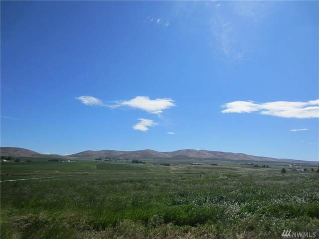 224 Rolling Hill Drive, Ellensburg, WA 98926 (MLS #1626445) :: Nick McLean Real Estate Group