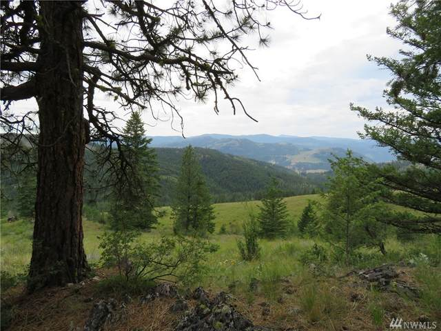 0-TBD Two Sisters Wy, Curlew, WA 99118 (#1626643) :: Ben Kinney Real Estate Team