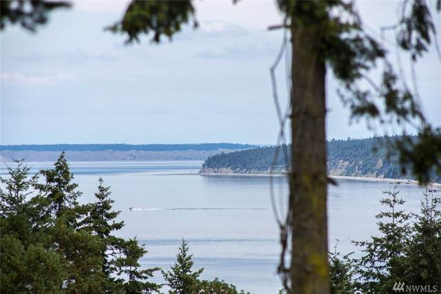 31 Discovery View Dr, Sequim, WA 98382 (#1626689) :: Pickett Street Properties