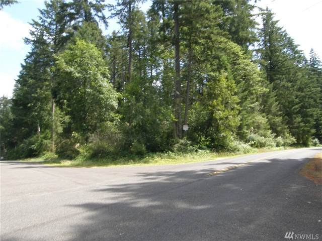 11302 106th St, Anderson Island, WA 98303 (#1626691) :: Better Properties Lacey